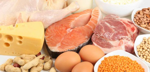 How Much Protein Should I Eat To Lose Weight?